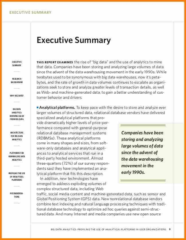 6+ examples of executive summaries | resume reference