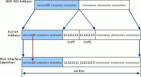 IPv6 Addressing (TechRef)
