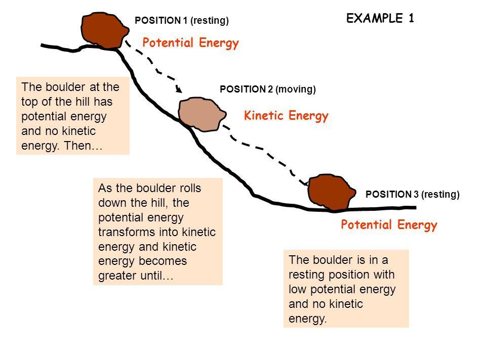 6.9)Science concepts. The student knows that obtaining ...