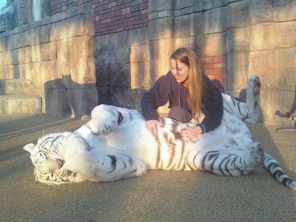 Best 25+ Zoo keeper jobs ideas only on Pinterest | Zoo keeper ...