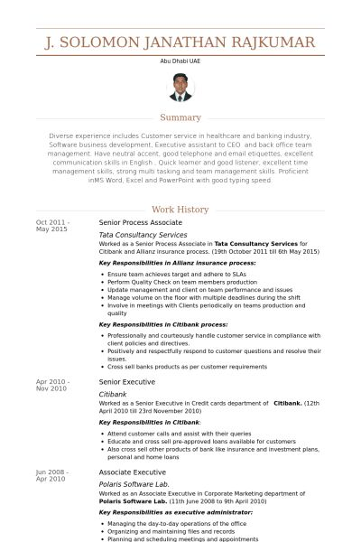Process Associate Resume samples - VisualCV resume samples database