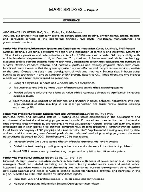 CIO Technology Executive Resume Example - Sample