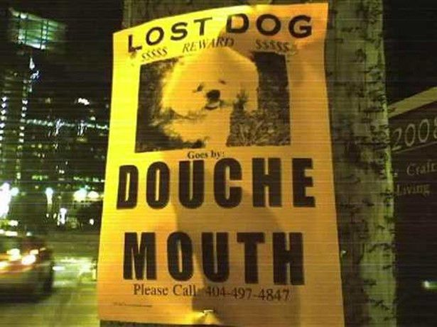 20 Funny Lost Pet Signs