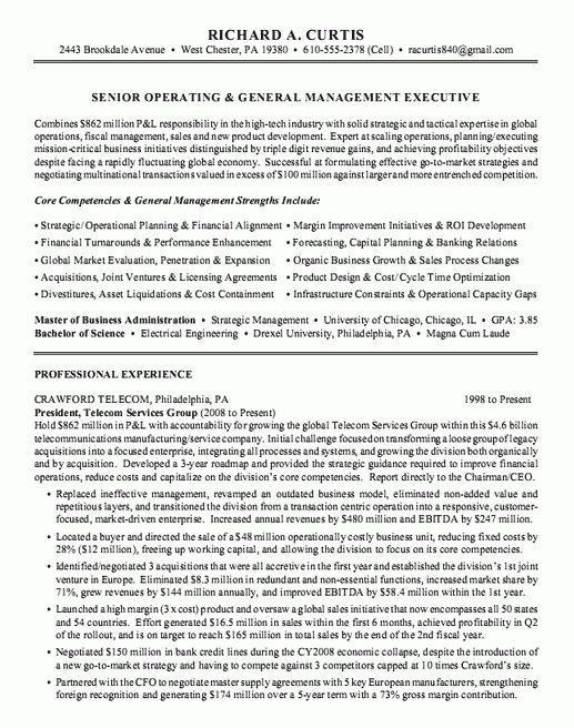 Executive Summary Resume Examples
