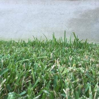 Liberty Lawn Care - 53 Photos & 39 Reviews - Landscaping - Cedar ...