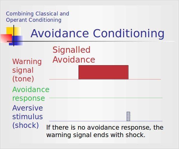 9+ Classical Conditioning Examples | Free & Premium Templates