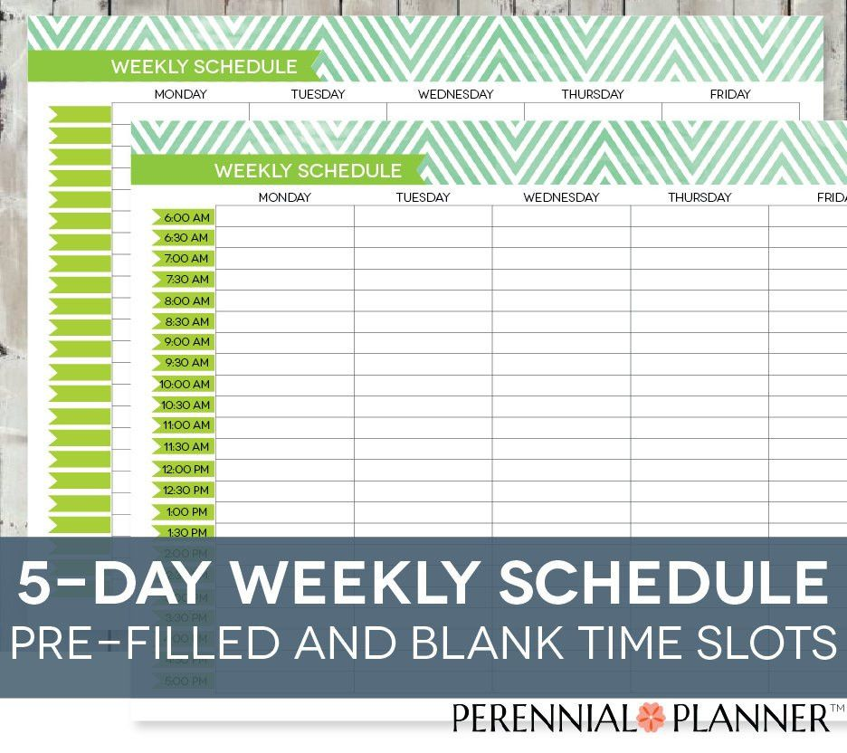 Daily Schedule Printable Editable Times Half-Hourly Weekly