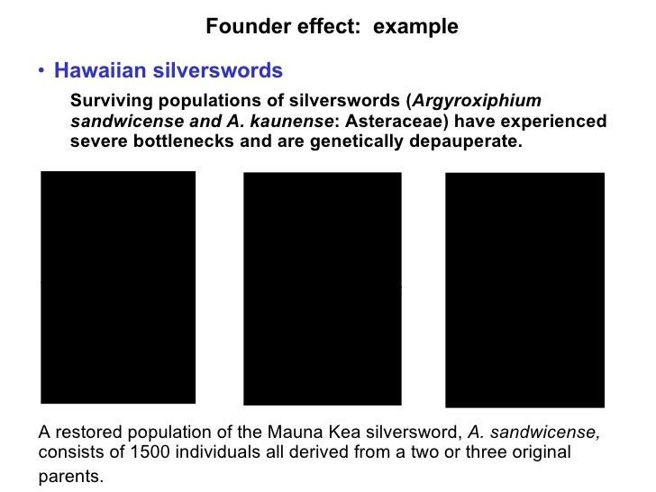 Genetics 101: Genetic Differentiation in the Age of Ecological Restor…