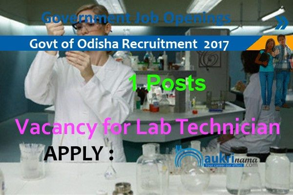 Lab Technician Jobs 2016 in Government of Odisha, handlooms.nic.in
