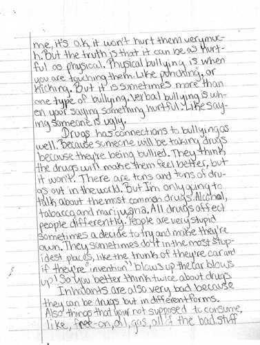 Sample Essay on Cyber Bullying - Blog .