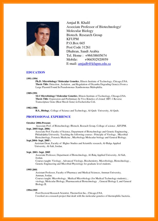 Curriculum Vitae : Resume Template For Work Experience How To ...