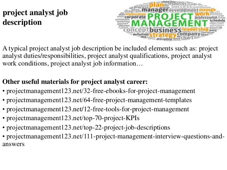Project analyst job description
