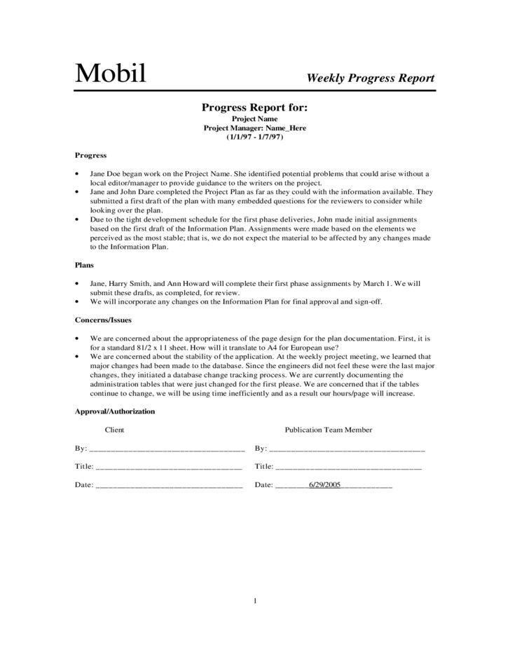 Weekly Progress Report Sample Free Download