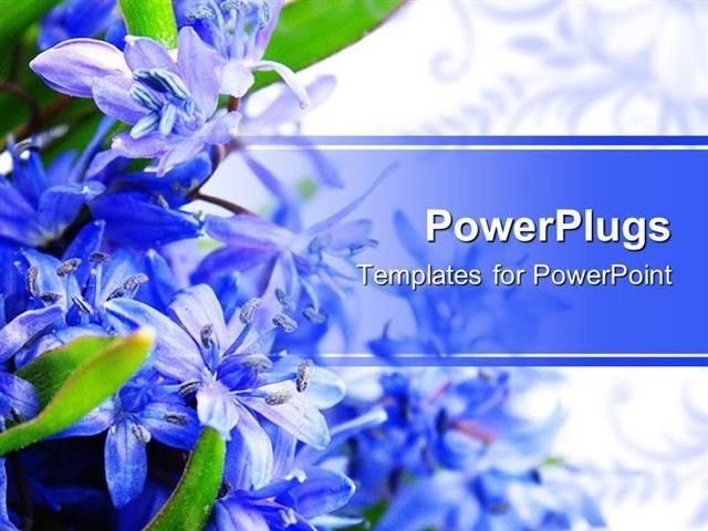 PowerPoint Template: beautiful spring flowers placed on a side and ...