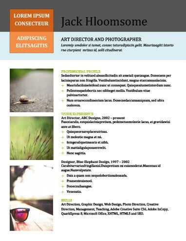 10 Portfolio Resume Templates [Free Download]