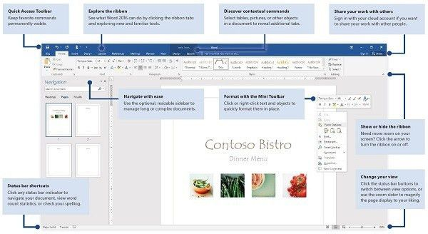 Ms Word User Manual | Examples.billybullock.us