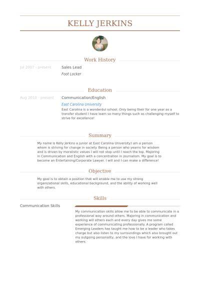 Sales Lead Resume samples - VisualCV resume samples database