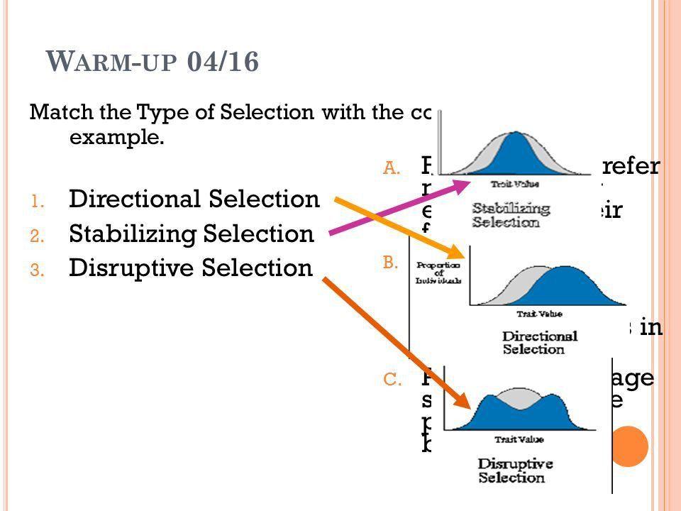 B IOLOGY B Standard 2B: Evolutionary Processes Week 1 Ms. Darlak ...