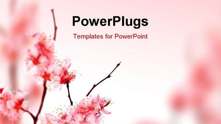 Spring Powerpoint Templates - Reboc.info