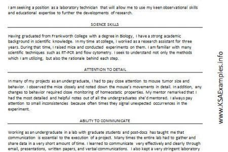 examples of ksa resumes 2 examples of simple resumes resume. view ...