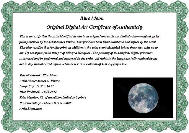 Art Certificate of Authenticity