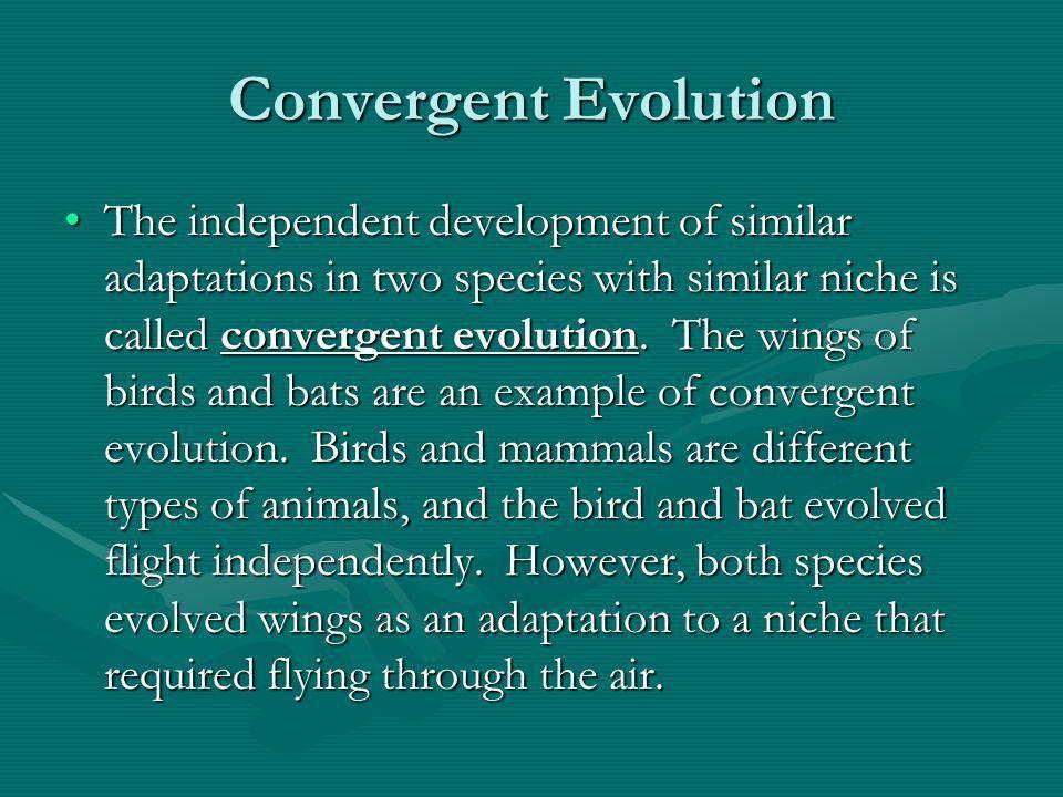 5.2 Adaptation 1. Explain how a species adapts to its niche. 2 ...