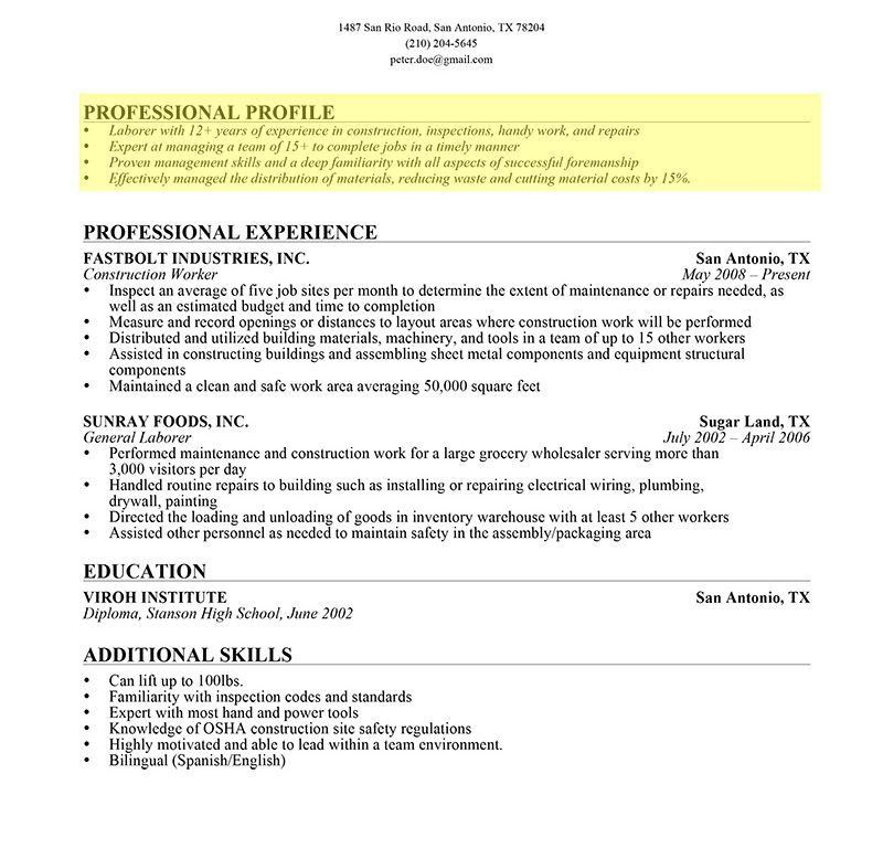 resume profile section examples resume profile 12 profile