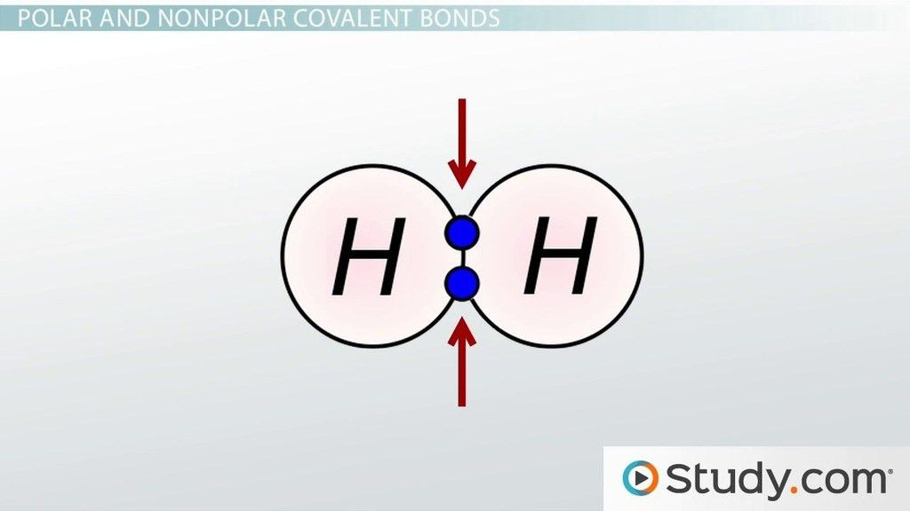 Chemical Bonds III: Polar Covalent - Video & Lesson Transcript ...