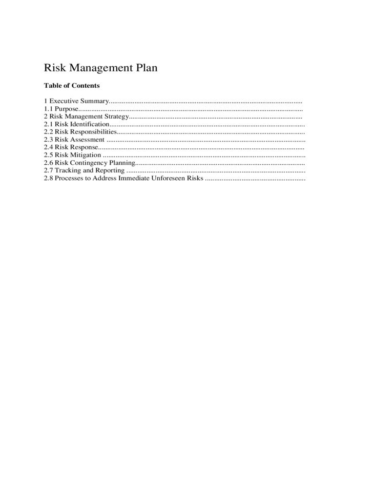 Sample Risk Management Plan Template Free Download