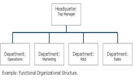 Functional_Organizational_Structure.jpg