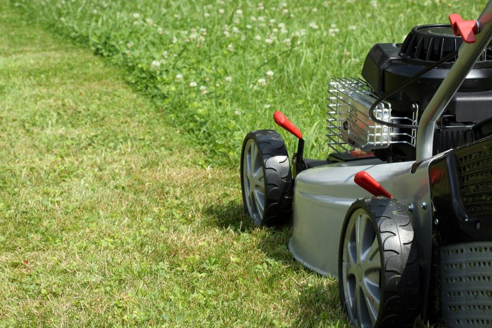 32 Best Lawn Care Business Names | Biz Junky