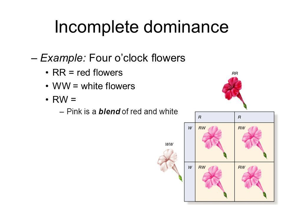 When Genetics is Not Simple - ppt video online download