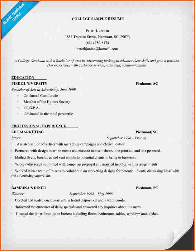 sample resume college student format download pdf activities