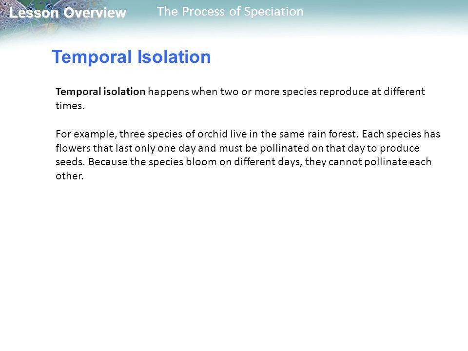 17.3 The Process of Speciation - ppt download