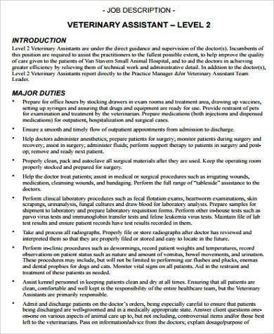 Sample Vet Tech Job Description - 8+ Examples in Word, PDF