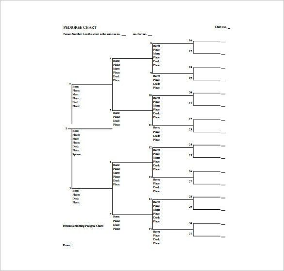 Pedigree Chart Template – 8+ Free Word, Excel, PDF Format Download ...