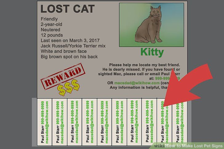 How to Make Lost Pet Signs (with Pictures) - wikiHow