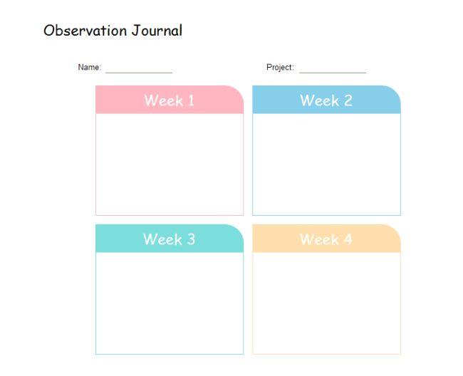 Observation Journal   Free Observation Journal Templates