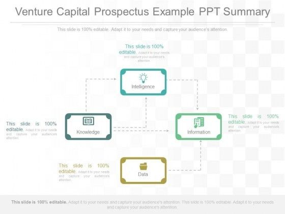Venture Capital Prospectus Example Ppt Summary - PowerPoint Templates