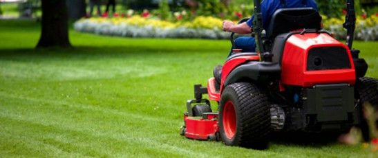 Lawn Care Services | Garden Maintenance Services Australia