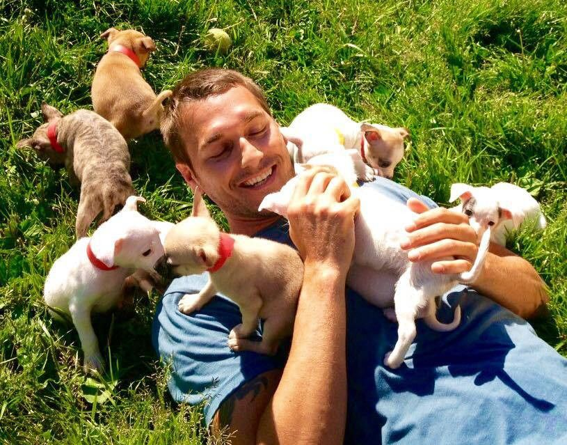 Animal Trainer, CBS's 'Lucky Dog' Star Brandon McMillan Finding A ...