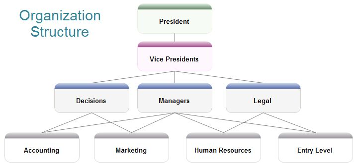 Sample Organization Structure