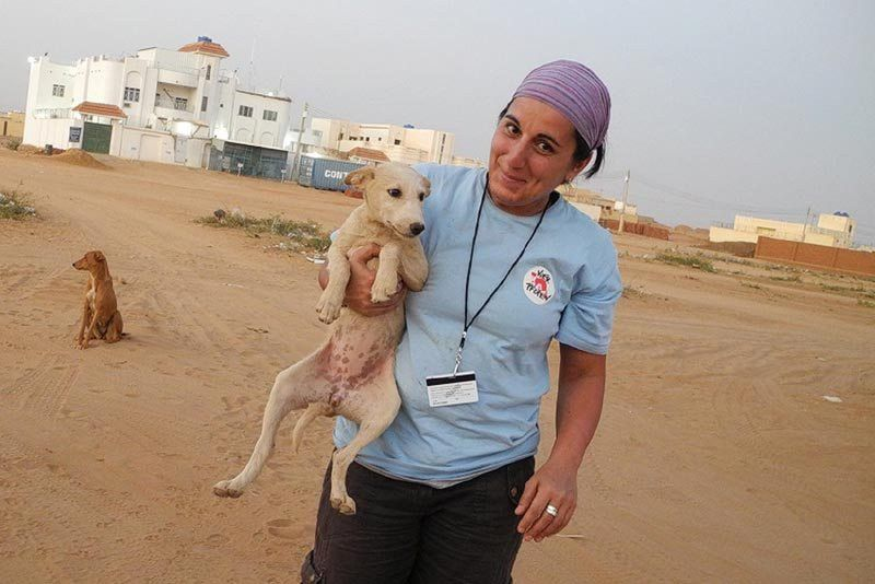 Interview with the SAC veterinarian: Three questions for Dr. Anca ...