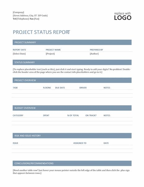 Project status report (Timeless design) - Office Templates