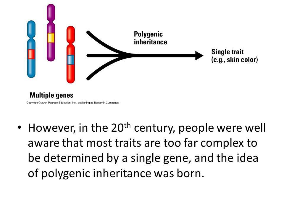 EXTENSION OF MENDELIAN GENETICS 1.Codominance 2.Incomplete ...