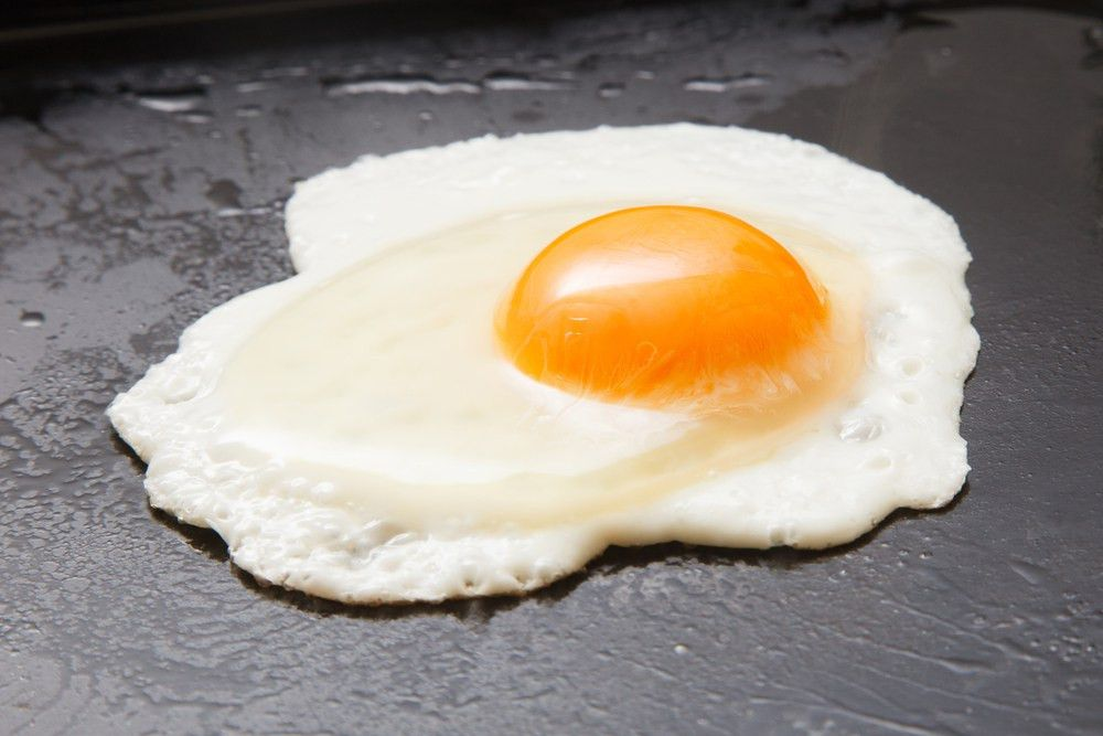 Eggs, Change, and Osmosis - Kids Discover