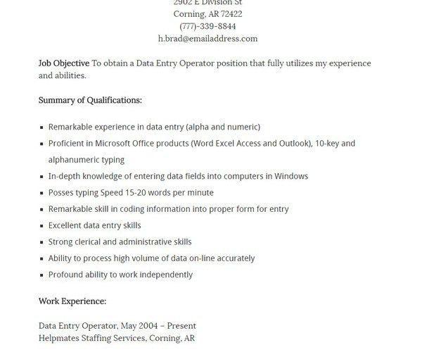 sample data entry resume resume website template sample e mail 9 ...