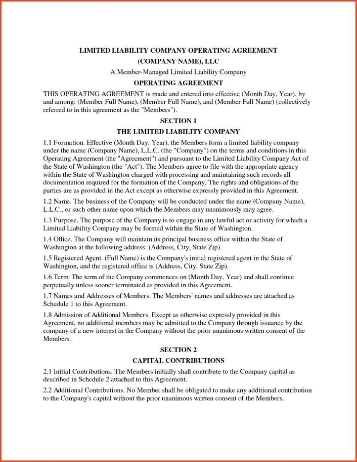 OPERATING AGREEMENT SAMPLE   Proposalsheet.com