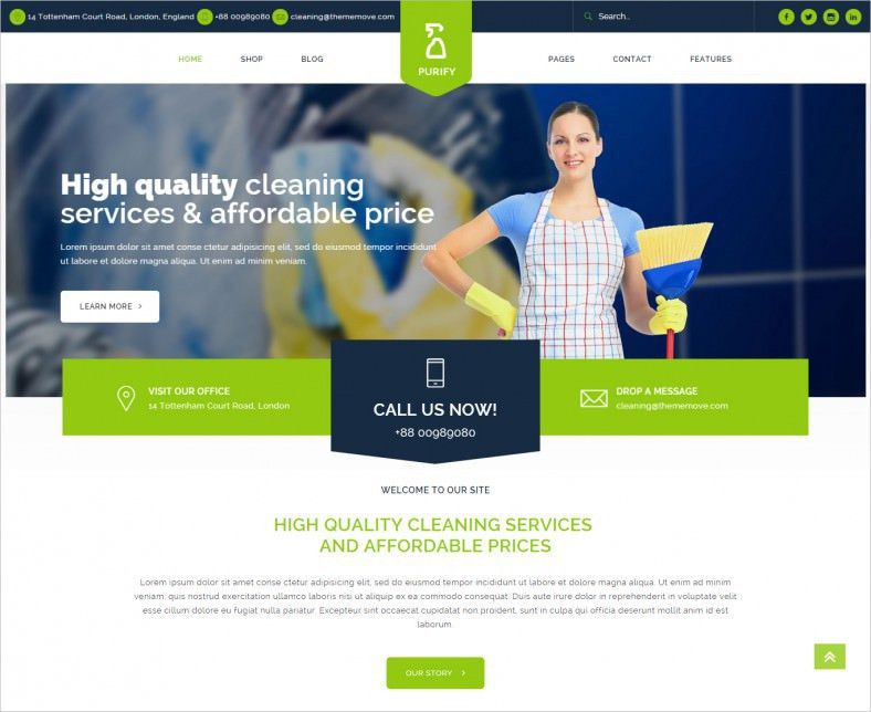 16+ Cleaning Company WordPress Templates & Themes | Free & Premium ...
