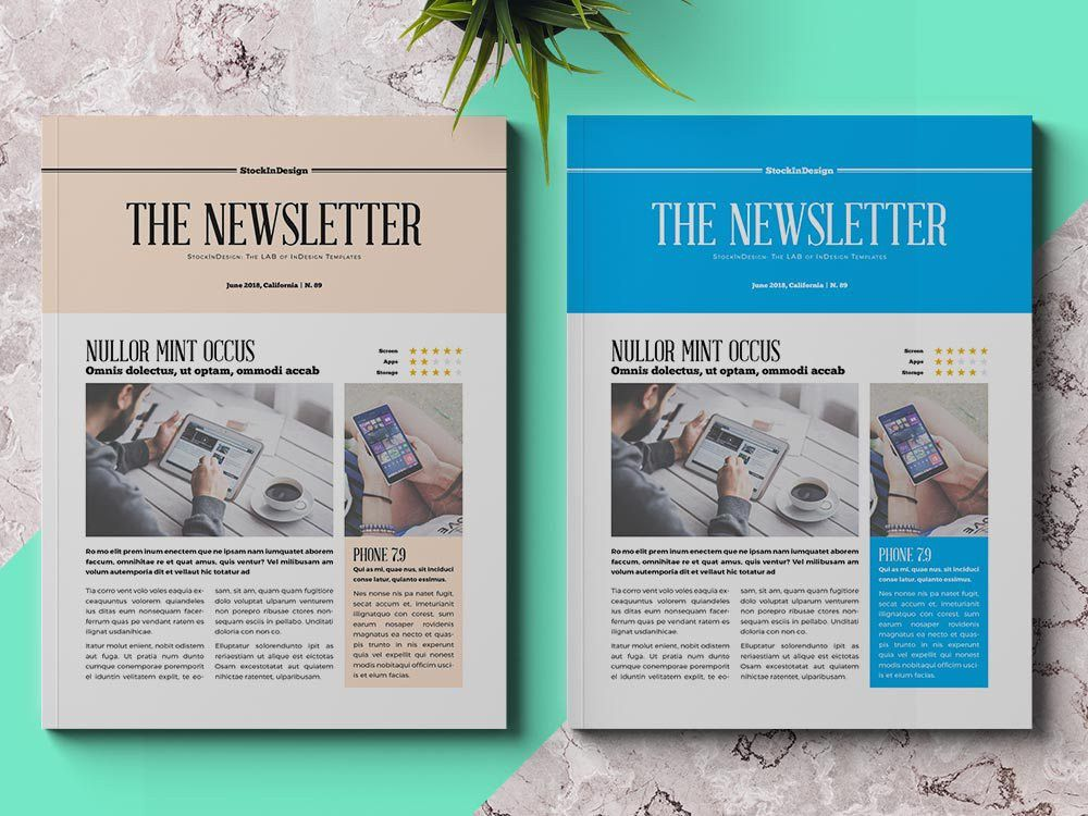 Business Newsletter Template | Adobe InDesign Templates for Designers